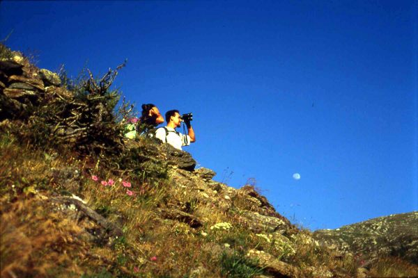 Hikers, Gr. Paradiso, Italy bob Grytten image