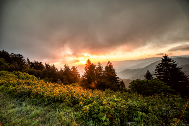 Blue Ridge Parkway by Duke Miller