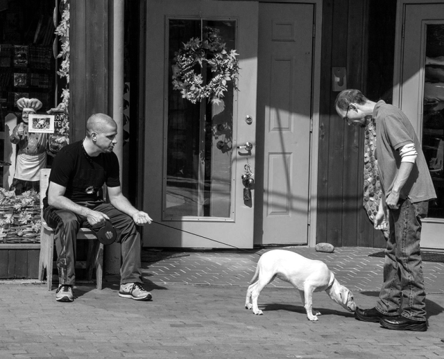 Street Scene by Beverly slone