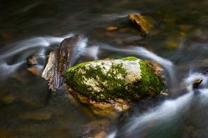 Cataloochee Valley #3 by Louis Sasso. Settings: Nikon D5300, 52mm, Aperture Priority, f/16, 2.5 sec, 00EV, Matrix metering