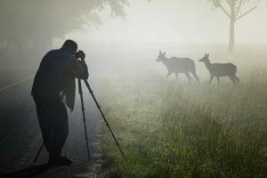 Cataloochee Valley 2 by Lousis Sasso, Settings: Nikon D5300, 140mm, Aperture Priority, f/29, 1/120 sec, 00EV, Matrix metering