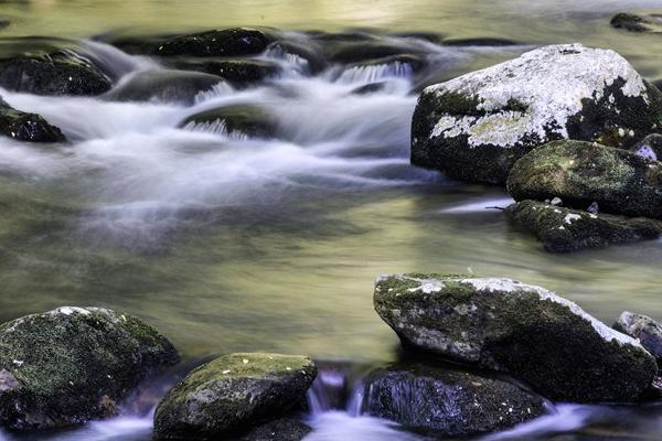Louis Sasso  Water flow at 600 PX 72DPI
