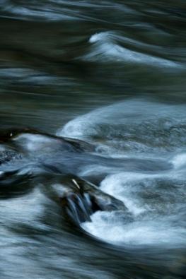 Richland Creek, Frog Level, NC