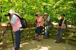May Group, Soco Falls Platform, Diane, Susan Chuck, Charles, Tripods