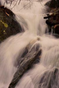 Cascade Rt215, Bob Grytten image